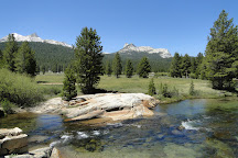 Tuolumne Meadows, Yosemite National Park, United States