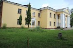 Боровухский Дом Культуры (бывший) на фото Боровухи