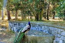 Beacon Hill Park, Victoria, Canada