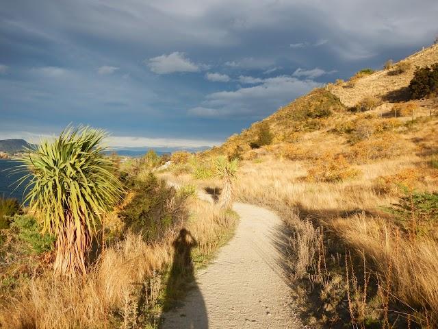Lake Wanaka Hike/Bike Track