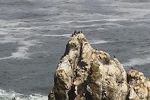 Yaquina Head Lighthouse, Newport, United States