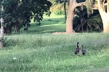Entebbe Botanic Gardens, Entebbe, Uganda