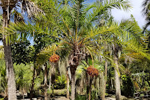Florida Tech Botanical Garden, Melbourne, United States