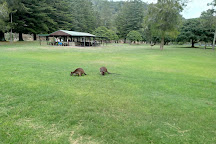 Ku-ring-gai Chase National Park, New South Wales, Australia