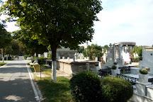 Cimitirul Ungureni, Craiova, Romania