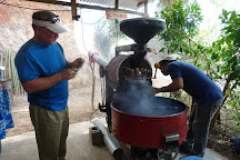 El Toledo Coffee Tour, Atenas, Costa Rica