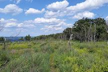 Lehigh Gap Nature Center, Slatington, United States
