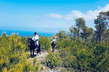 Ibiza Horse Valley, Sant Joan de Labritja, Spain