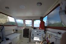 Admiralty Dive Center, Charlotte Amalie, U.S. Virgin Islands