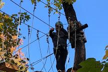 Treetop Trekking Hunstville, Huntsville, Canada