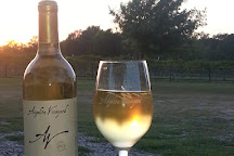Angelita Vineyard & Winery, Corsicana, United States