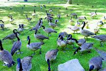 Hubbard Park, Meriden, United States