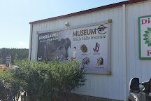 The Museum @ Black Hills Institute, Hill City, United States