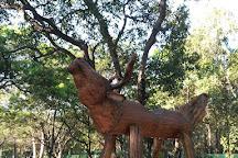 Cubbon Park, Bengaluru, India