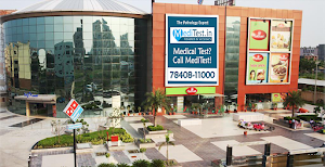MediTest.in | Full Body Checkup in Delhi Greater Noida, Faridabad | Thyroid Test Vitamin D, B12