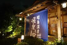 Kunitachi Onsen Yuranosato, Kunitachi, Japan