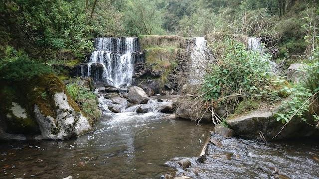 Parc national Cumbres del Ajusco