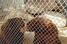 Southwest Wildlife Conservation Center, Scottsdale, United States