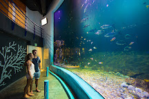 Interactive Aquarium, Cancun, Mexico