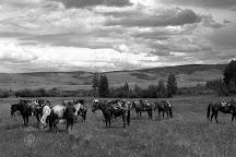 Laramie River Dude Ranch, Jelm, United States