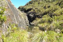 Chirripo National Park, Province of San Jose, Costa Rica