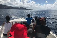 Irievasion, Fort-de-France, Martinique