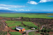 Ocean Vodka Organic Farm and Distillery, Kula, United States