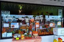 Davidson Brothers Citrus Gifts, Daytona Beach, United States