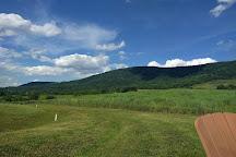 Glen Manor Vineyards, Front Royal, United States