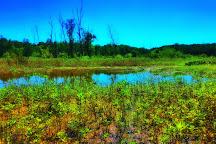 Lake Conestee Nature Park, Conestee, United States