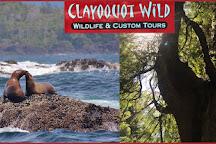 Clayoquot Wild, Tofino, Canada
