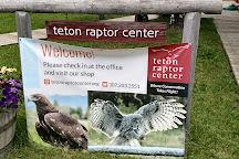 Teton Raptor Center, Wilson, United States