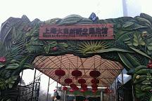 Natural Wild-insect Kingdom, Shanghai, China