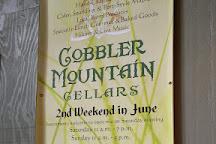 Cobbler Mountain Cellars, Delaplane, United States
