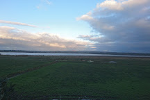 RSPB Portmore Lough, Craigavon, United Kingdom