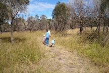 Ocean Grove Nature Reserve, Wallington, Australia