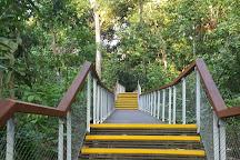 Treetop Walk, Singapore, Singapore