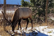 Elkhorn Stables, Estes Park, United States