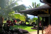 Common Ground Kauai, Kilauea, United States