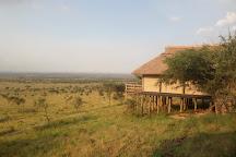 Kenya Tanzania Safari, Nairobi, Kenya