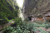 Parque Nacional de las Cavernas del Rio Camuy, Camuy, Puerto Rico