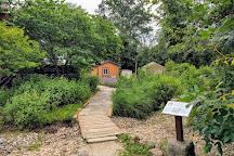 W.W. Knight Nature Preserve, Perrysburg, United States
