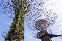 Gardens by the Bay, Singapore, Singapore