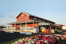 Al's Family Farms, Fort Pierce, United States