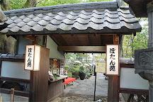 Ueno no Mori Sakura Terrace, Uenokoen, Japan
