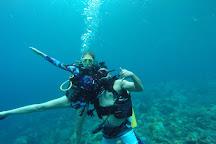 Action Adventure Divers, Soufriere, St. Lucia