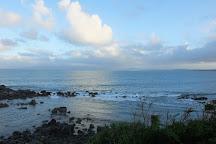 Monkey Island, Orepuki, New Zealand