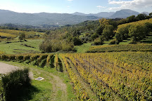 Azienda vinicola Feudi di San Gregorio, Sorbo Serpico, Italy