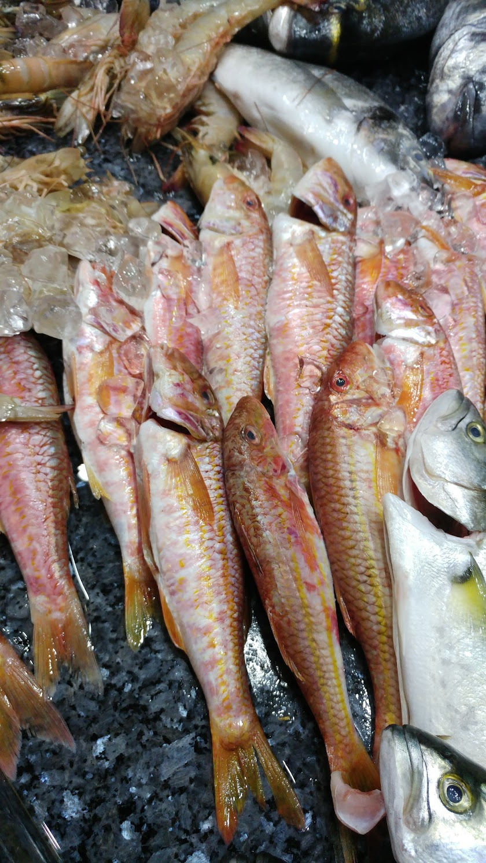 Yüksel Balık Seafood Restaurant Resim 1