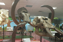 Children's Nature Center, Grand Junction, United States